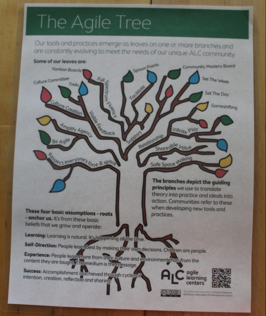 The Agile Tree